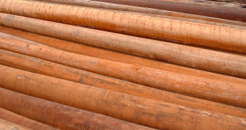 All-natural hardwood utility poles 02.
