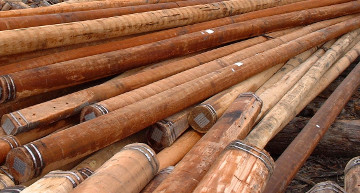 All-natural hardwood utility poles 03.